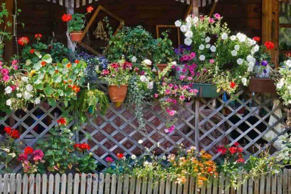 Декорирование ограды из дерева