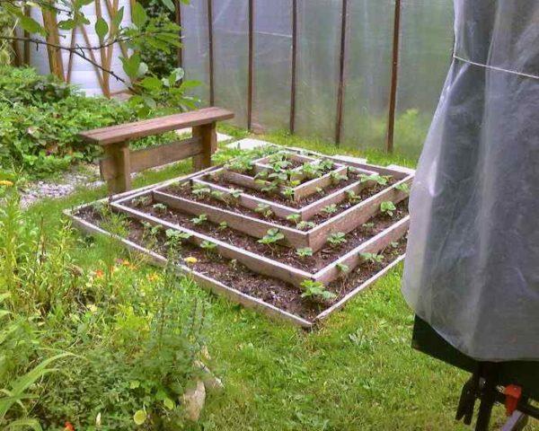 Многоярусный огород для земляники