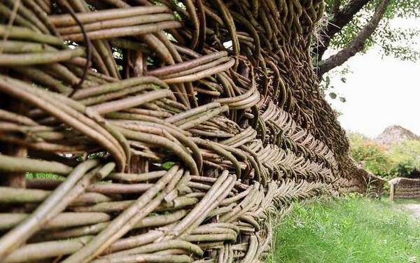Изгородь из переплетающихся прутьев