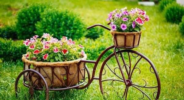 Цветник в форме велосипеда
