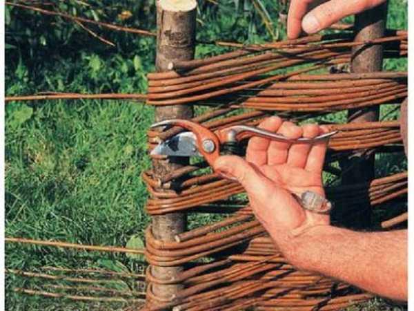 Подрезка прутьев