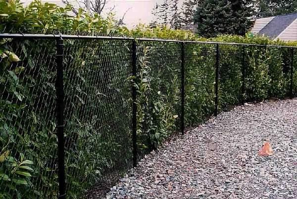 Сетчатая ограда
