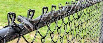 Забор от змей